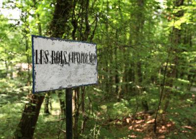 bois-chamblard
